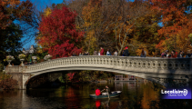 Los mejores sitios para disfrutar la naturaleza de otoño en Nueva York