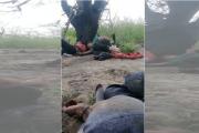 """""""Lo siento"""": video documenta el drama de inmigrantes abandonados en la frontera"""