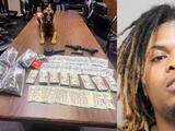 Decomisan casi $22,000 y marihuana con ayuda de un perro policía al norte de Houston