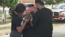 Otro adolescente en Miami está en problemas con la ley: lo acusan de robarse dos vehículos y una mascota