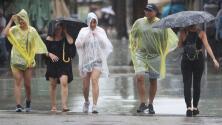 Poco a poco, Miami Beach vuelve a la normalidad tras el paso de la tormenta tropical Gordon