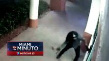 'Miami en un Minuto': Sospechosos de robo usan martillo para entrar a tienda de tecnología