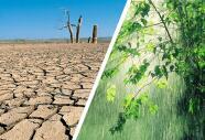 Llegan tres tormentas a California pero no significa el fin de la sequía