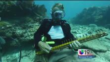 Música bajo el mar