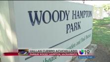 Hayan un cuerpo sin vida en el parque Woody Hampton