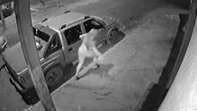 (Advertencia, contenido gráfico) Captan momento en que joven es apuñalada por su esposo tras encontrarla con otro y su amante la deja morir en la calle