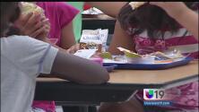 Programa federal ofrece comida gratis a estudiantes sin importar su condición migratoria