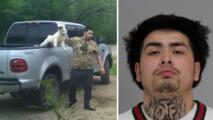 Arrestan a joven sospechoso de crueldad animal en Dallas