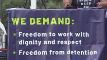 Activistas piden que se detengan las deportaciones de inmigrantes haitianos