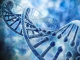 Científicos asocian mutaciones genéticas con casos graves de leucemia en niños hispanos