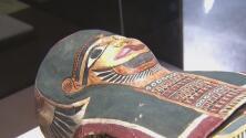 Una momia llamada Annie está de visita en el sur de la Florida