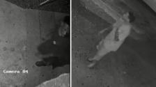 Ofrecen recompensa para encontrar a persona de interés en el homicidio de un hombre en Dallas