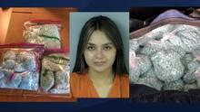 Detienen en Arizona a una mujer con $1.5 millones en droga dentro de una lonchera