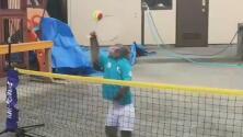 Este simpático mono tiene mejor volea en la red que muchos tenistas profesionales
