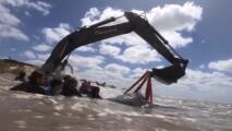 La aparatosa operación de rescate que logró salvar una ballena varada en la costa argentina