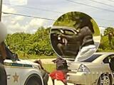 Emboscan a oficiales del condado de Brevard, el atacante fue abatido