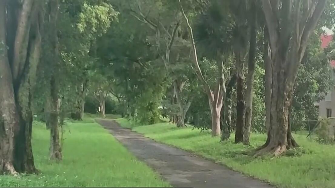 Lo que se sabe del asesinato de un menor de 14 años en un parque comunitario de Miami-Dade