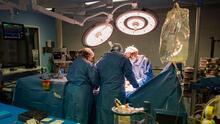 Cirujanos logran trasplantar por primera vez un riñón de cerdo a un humano