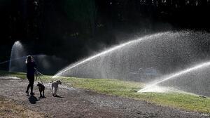 Roseville exige reducir el uso de agua para los jardines