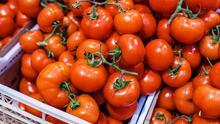 Preocupa el aumento de precio en tomate luego que EEUU frenara la importación de una empresa en México