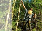 La historia del ermitaño que fue desalojado de su cabaña en el bosque tras 27 años aislado