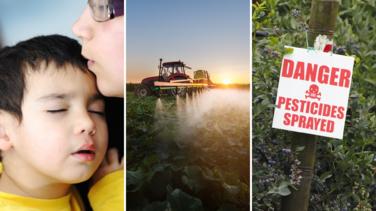 Presentan demandas por pesticida que presuntamente ha causado daño cerebral en niños