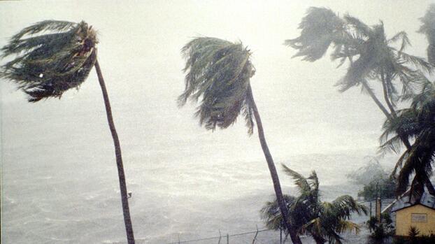 Actualizan el pronóstico de la temporada de huracanes 2021: se espera que sea un 65% activa