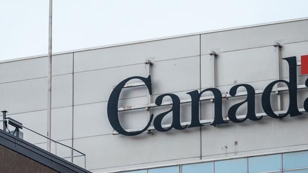 Así fue el fraude masivo a mexicanos por una dudosa oferta para ir a trabajar a Canadá