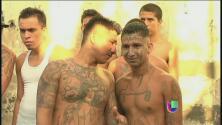 Pandillas salvadoreñas en busca de poder