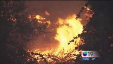 Voraz incendio afecta a Napa y Yolo