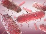 Las infecciones tratadas con antibióticos en la infancia pueden aumentar los riesgos de enfermedades mentales