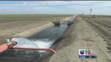 Californianos obligados a reducir consumo de agua