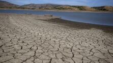 ¿Cómo logrará California lidiar con los impactos de la sequía? Gavin Newsom responde