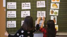 Los beneficios cognitivos de aprender un nuevo idioma, según una experta