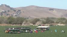 Agricultores latinos serán capacitados en mejoramiento de calidad y aprovechamiento de recursos