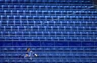 ¿Tampa Bay y Montreal Rays? MLB permitiría equipo con dos sedes