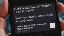 Mira por qué un mensaje de texto relacionado con tu licencia de conducir puede hacerte caer en un fraude