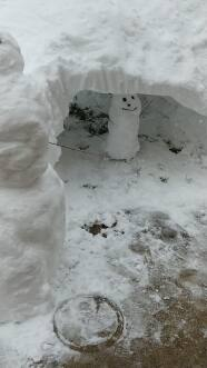 Mariachis, mascotas y la creatividad de Chicago después que caen mas de 8 pulgadas de nieve en las ultimas 24 horas