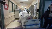 Disminuye la cifra de pacientes hospitalizados con coronavirus en Florida
