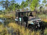 Caso Gabby Petito: con buzos especializados buscan a Brian Laundrie en bosque de Florida