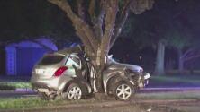 Conductor que perdió el control de su vehículo chocó contra un árbol y murió en la escena