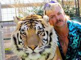 """""""Quieren juzgar a Tiger King"""": Ted Cruz sobre proyecto de ley que prohíbe la propiedad de grandes felinos"""