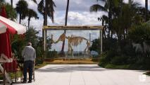 Te presentamos al Faena District, el corazón cultural de Miami Beach