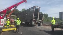 Mueren diez vacas durante un accidente vial en la autopista I-285