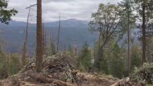Autoridades temen deslizamientos de tierra por las lluvias en zonas afectadas por los incendios