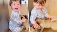 La tierna reacción de un bebé al conocer a sus 'hermanos' cachorros