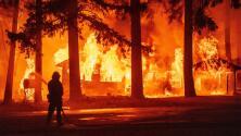 Seis estados de EEUU enfrentan emergencias por incendios forestales consumiendo miles de acres