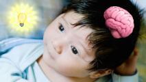 Bebés cabezones son más inteligentes, según estudio