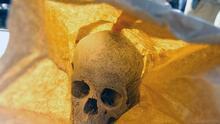 Usuario de TikTok desata polémica por vender huesos humanos