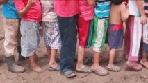 Especial: Chiapas, nuestra tierra